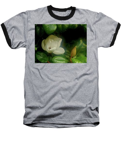 Magnolia Baseball T-Shirt by Evelyn Tambour