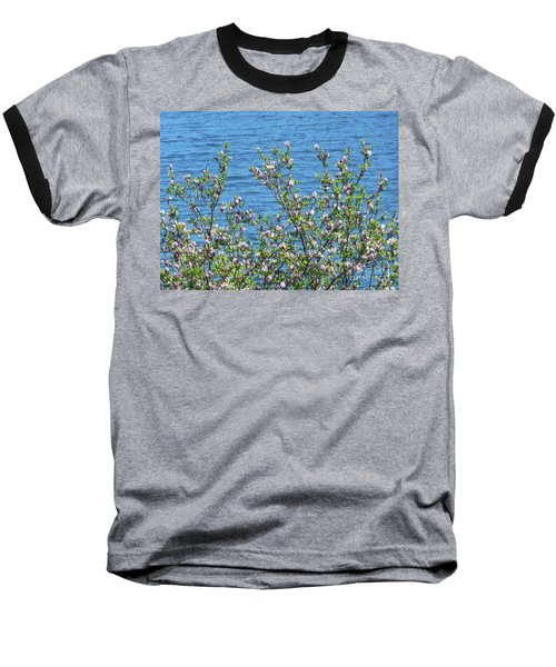 Magnolia Flowering Tree Blue Water Baseball T-Shirt