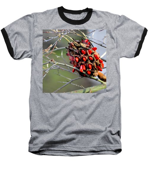 Baseball T-Shirt featuring the photograph Magnolia Seedhead by Tanya Searcy