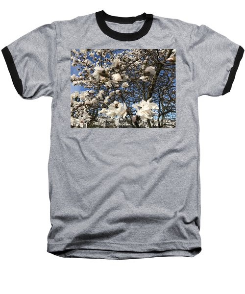 Baseball T-Shirt featuring the photograph Magnolia Tree In Blossom by Patricia Hofmeester
