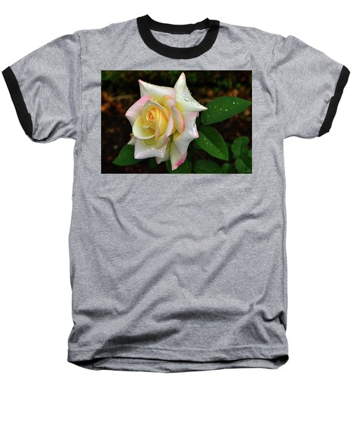 Baseball T-Shirt featuring the photograph Maid Of Honour Rose 003 by George Bostian