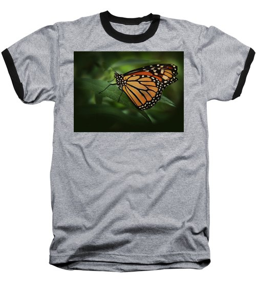 Majestic Monarch Baseball T-Shirt by Marie Leslie