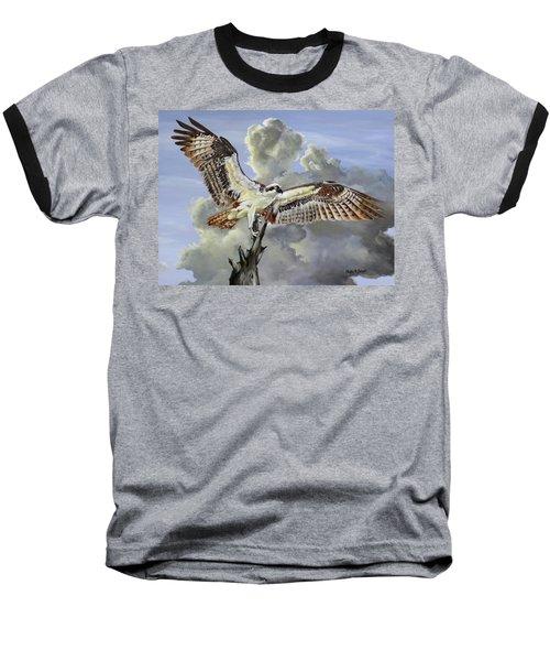 Majestic Sea Hawk Baseball T-Shirt by Phyllis Beiser