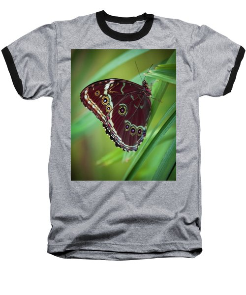 Majesty Of Nature Baseball T-Shirt by Karen Wiles