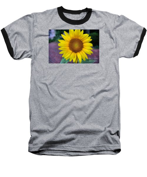 Makes  Me And You Smile Baseball T-Shirt by John S