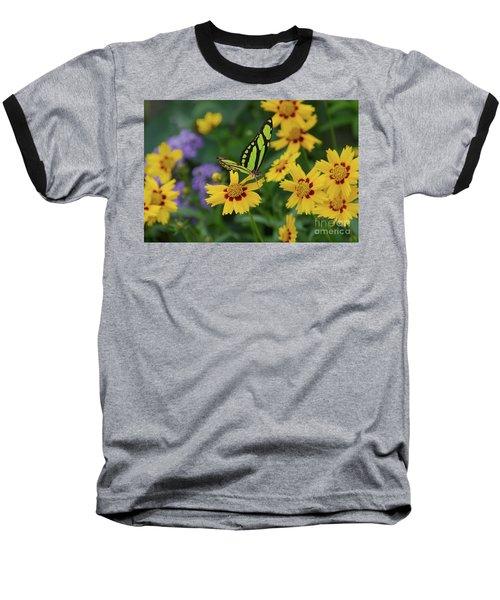 Malachite Butterfly Baseball T-Shirt