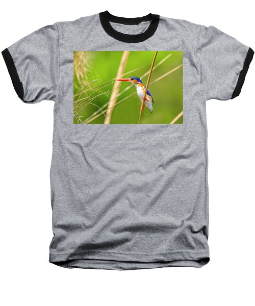 Malalchite Kingfisher Baseball T-Shirt