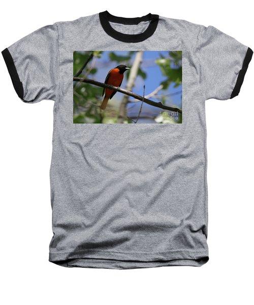 Male Baltimore Oriole Baseball T-Shirt