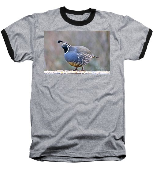 Male California Quail Baseball T-Shirt by Sean Griffin