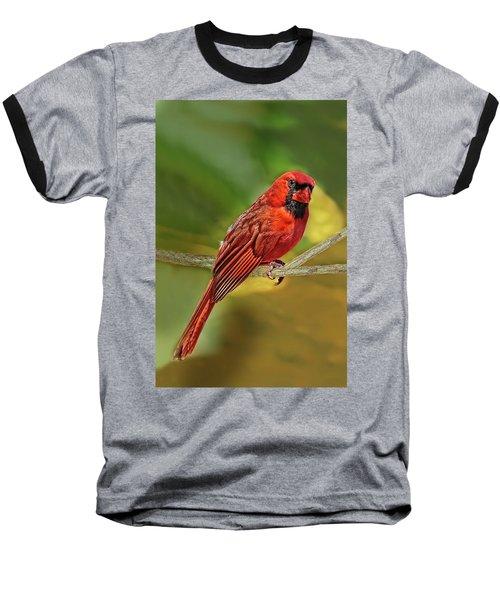 Male Cardinal Headshot  Baseball T-Shirt