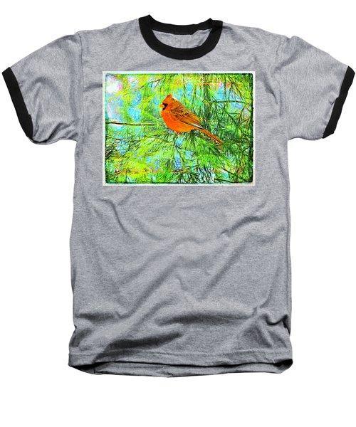 Male Cardinal In Juniper Tree Baseball T-Shirt