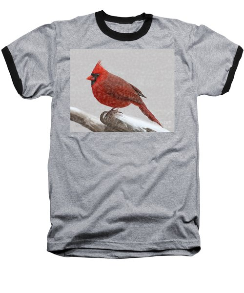 Male Cardinal In Snow Baseball T-Shirt by Rand Herron