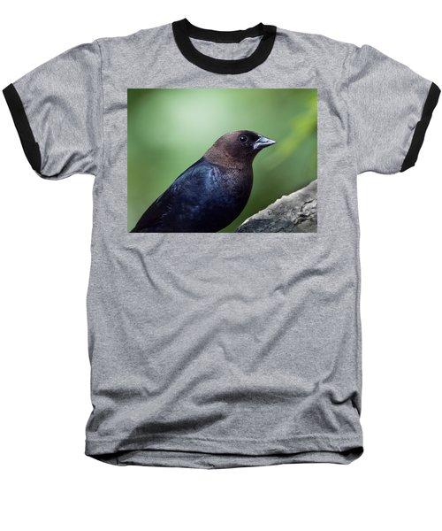 Male Cowbird Baseball T-Shirt