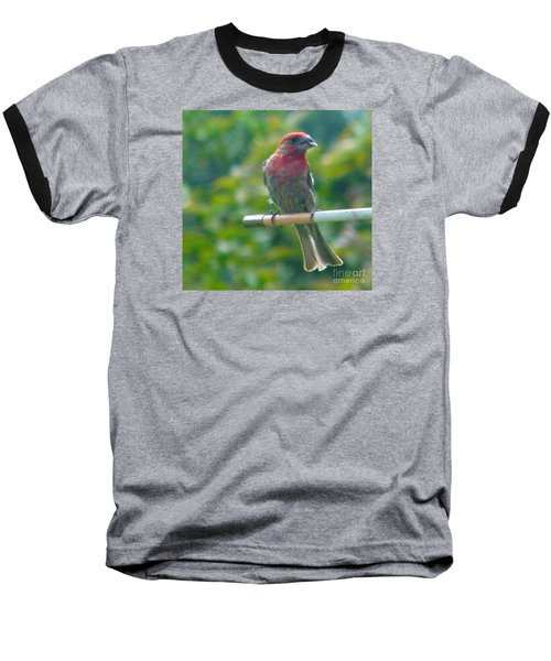 Male Crossbill With Sunflower Seed    August  Indiana Baseball T-Shirt by Rory Cubel