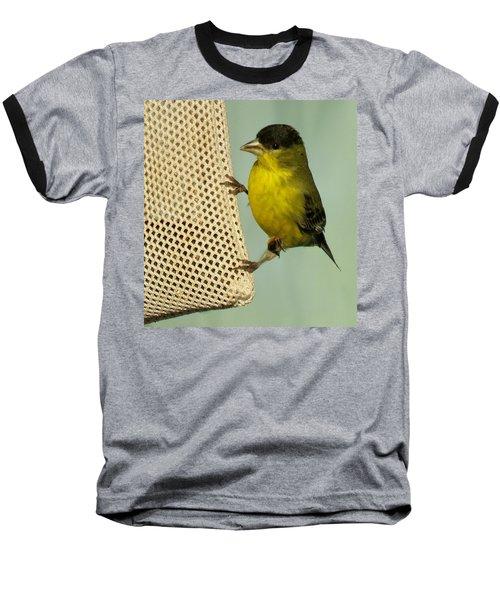Male Goldfinch On Sock Feeder Baseball T-Shirt