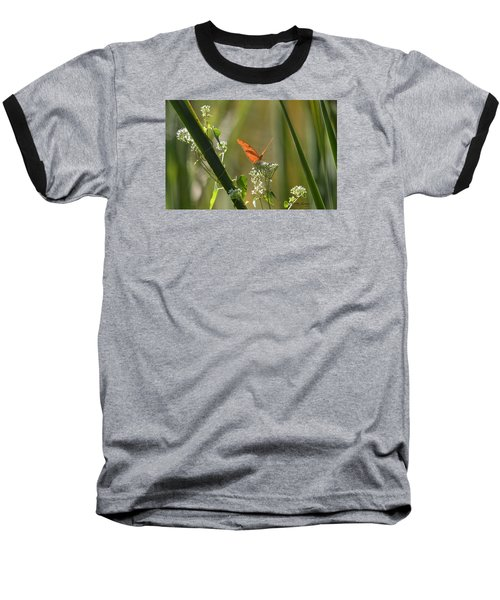 Male Julia Heliconia Butterfly Baseball T-Shirt