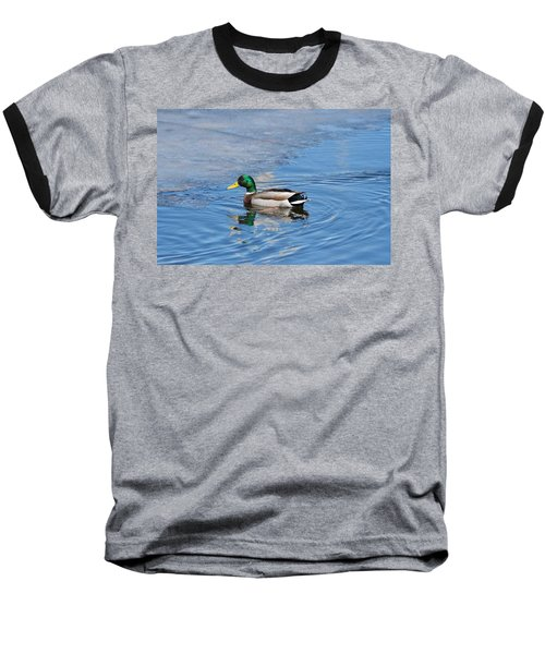 Baseball T-Shirt featuring the photograph Male Mallard Duck by Michael Peychich