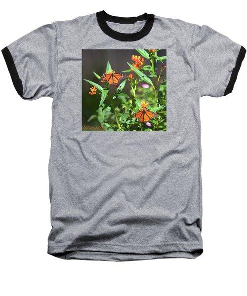 Male Monarch Butterflies Baseball T-Shirt
