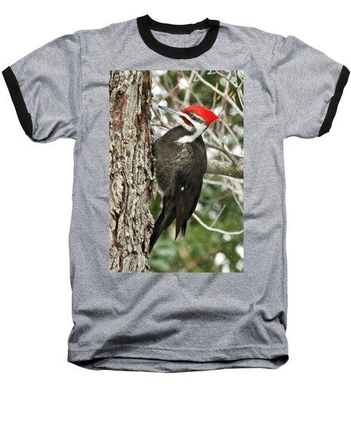 Male Pileated Woodpecker 6069. Baseball T-Shirt