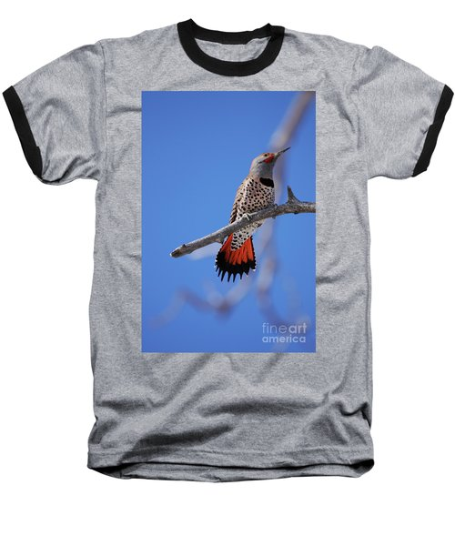 Male Red Shafted Northern Flicker Baseball T-Shirt