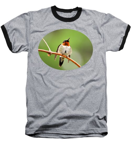 Male Ruby-throated Hummingbird Baseball T-Shirt by Christina Rollo