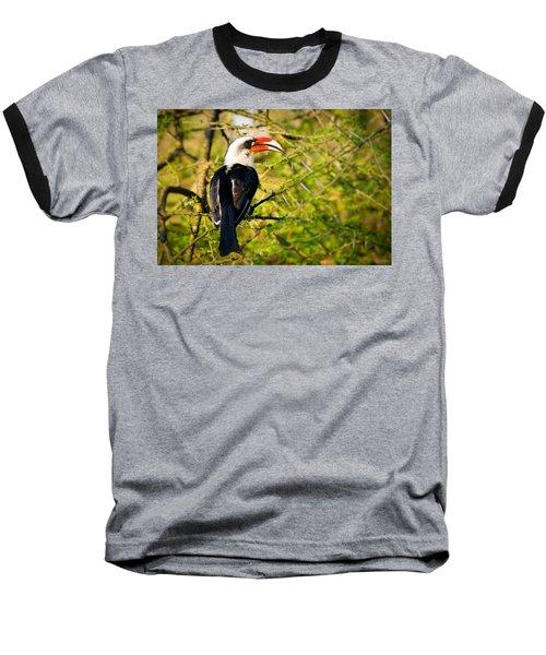 Male Von Der Decken's Hornbill Baseball T-Shirt by Adam Romanowicz