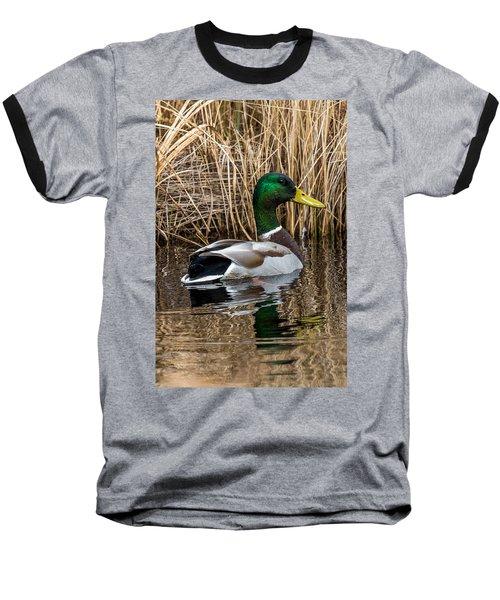Mallard II Baseball T-Shirt