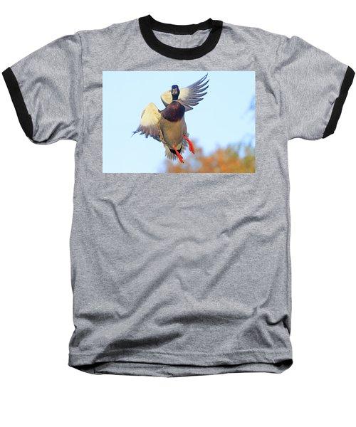 Mallard In Flight 2 Baseball T-Shirt