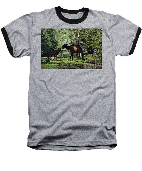 Elk Calf - Mother Rmnp Co Baseball T-Shirt