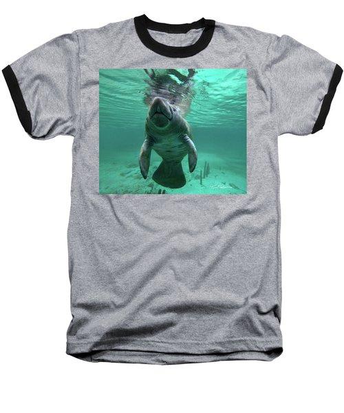 Manatee Breathing Baseball T-Shirt by Tim Fitzharris