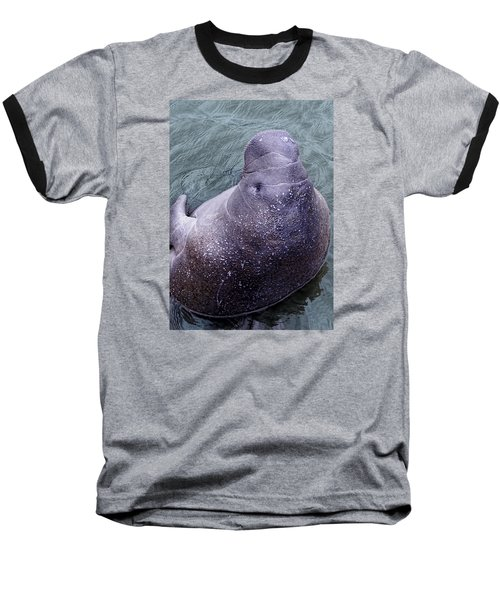 Baseball T-Shirt featuring the photograph Manatee Seen From Dock- Up Close And Personal by Penny Lisowski