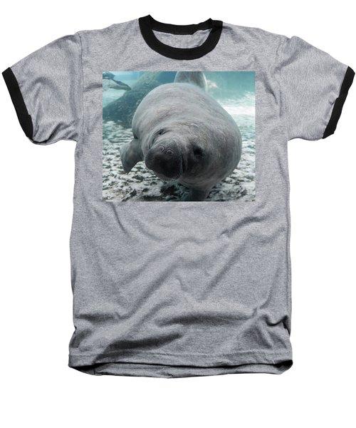 Manatee Baseball T-Shirt