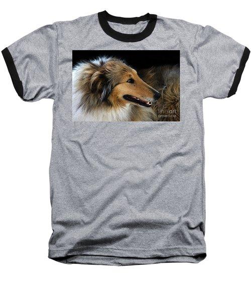 Man's Best Friend Baseball T-Shirt by Bob Christopher