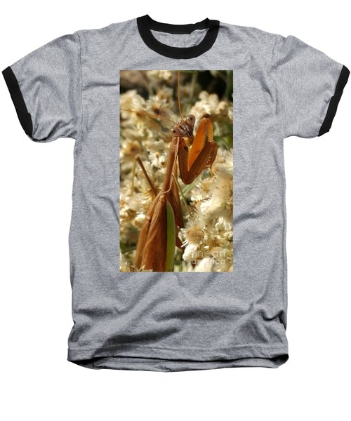 Mantis Pose Baseball T-Shirt