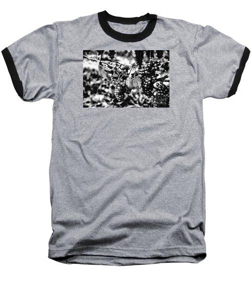 Many Grapes Baseball T-Shirt