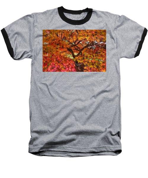 Maple Beauty Baseball T-Shirt