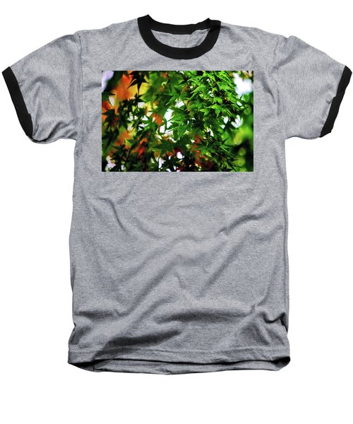 Maple In The Mist Baseball T-Shirt by Mark Lucey