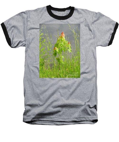 Maple On Lake Baseball T-Shirt by Craig Walters