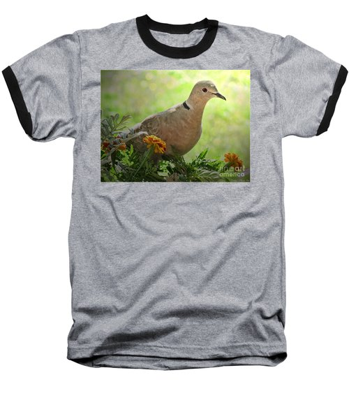 Baseball T-Shirt featuring the photograph Marigold Dove by Debbie Portwood