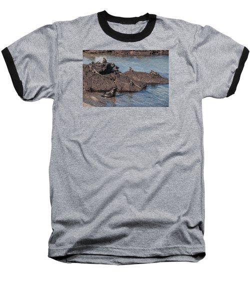 Marine Iguanas And Sealion Pup At Punta Espinoza Fernandina Island Galapagos Islands Baseball T-Shirt