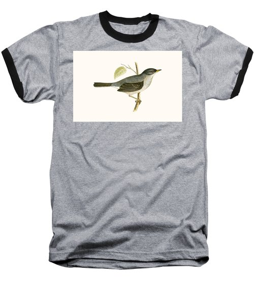 Marmora's Warbler Baseball T-Shirt by English School