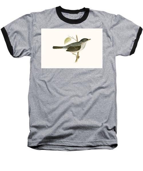 Marmora's Warbler Baseball T-Shirt
