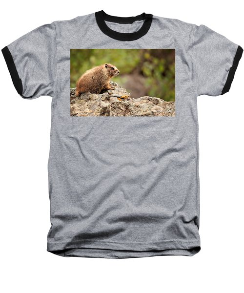 Baseball T-Shirt featuring the photograph Marmot by Lana Trussell