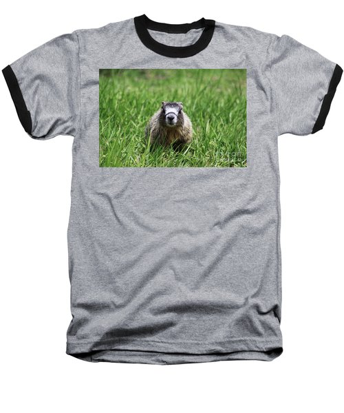 Baseball T-Shirt featuring the photograph Marmot Pup by Alyce Taylor