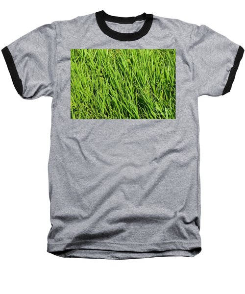 Marsh Grasses Baseball T-Shirt
