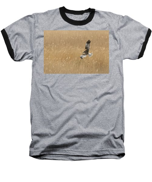 Marsh Harrier Baseball T-Shirt