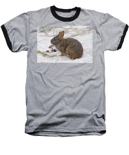 Marsh Rabbit On Dune Baseball T-Shirt