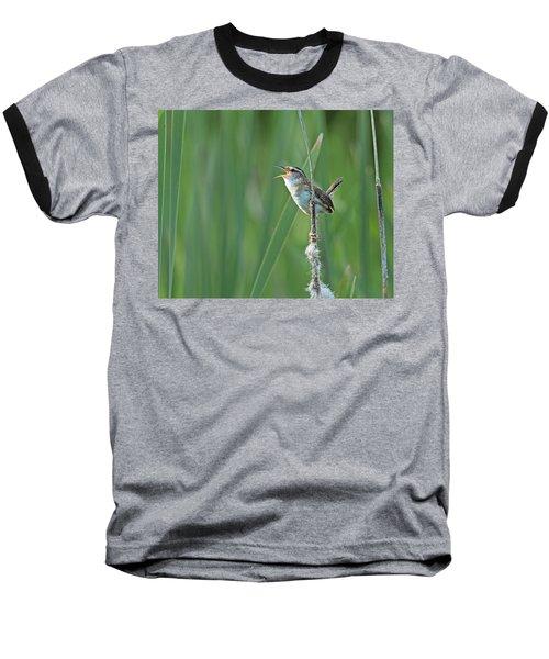 Marsh Wren Baseball T-Shirt