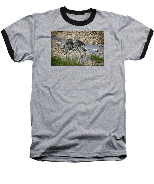 Martial Eagle Baseball T-Shirt by Gary Hall
