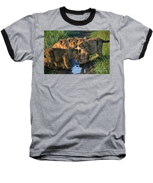 Masai Mara Lion Cubs Baseball T-Shirt by Karen Lewis